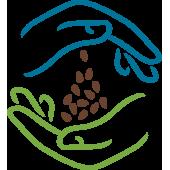 Order Edible Ayurvedic Seeds, Beej and Magaj - IndianJadiBooti.com