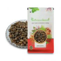 IndianJadiBooti Jamalghota Beej - Jamalghota Seeds - Croton Seeds - Croton Tiglium