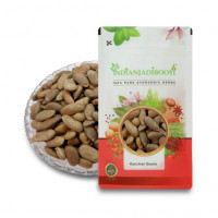 IndianJadiBooti Kanchan Seeds - Beej Kanchan - Champak Seed - Michelia Champaca