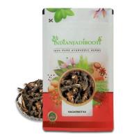 IndianJadiBooti Nagarmotha Roots - Nagarmotha Jadd - Nutsedge Grass - Nut Grass - Cyperus Rotundus