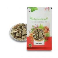 IndianJadiBooti Shalparni - Shalaparni - Sarivan - Desmodium Gangeticum