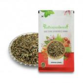 IndianJadiBooti Stevia Leaf - Madhu Tulsi - Mithi Tulsi - Stivia Leaves - Stevia rebaudiana